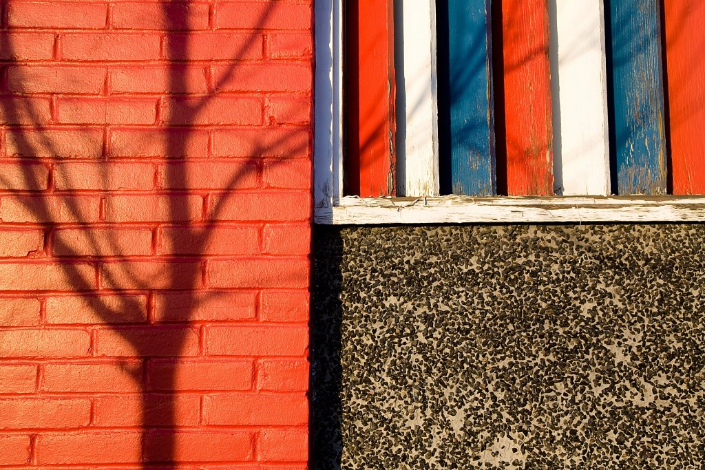 Tree reflected on a red brick wall with red white and blue shutt