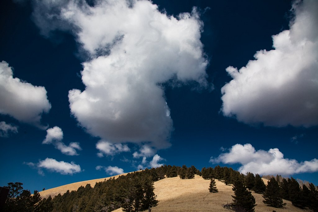 Fluffy clouds above a forested New Mexico peak